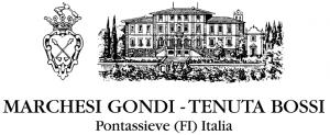 663x271xMarchesi-Gondi-Tenuta-Bossi.png.pagespeed.ic.97C7MwStIh
