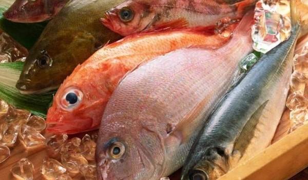pesce fresco2