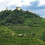 perlage-organic-winery-veneto