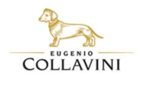 Collavinilogo